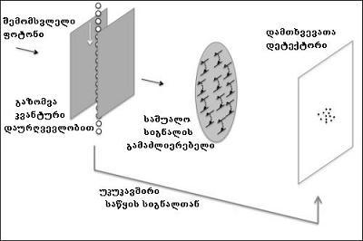 kvant etelskopi