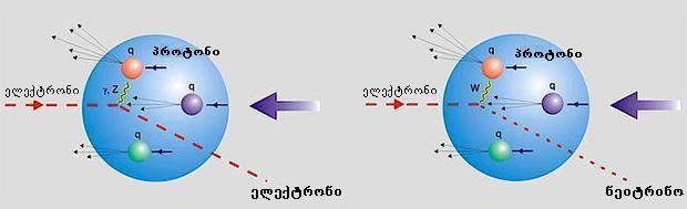 grmad araxisti gabneva protonze leptonebis